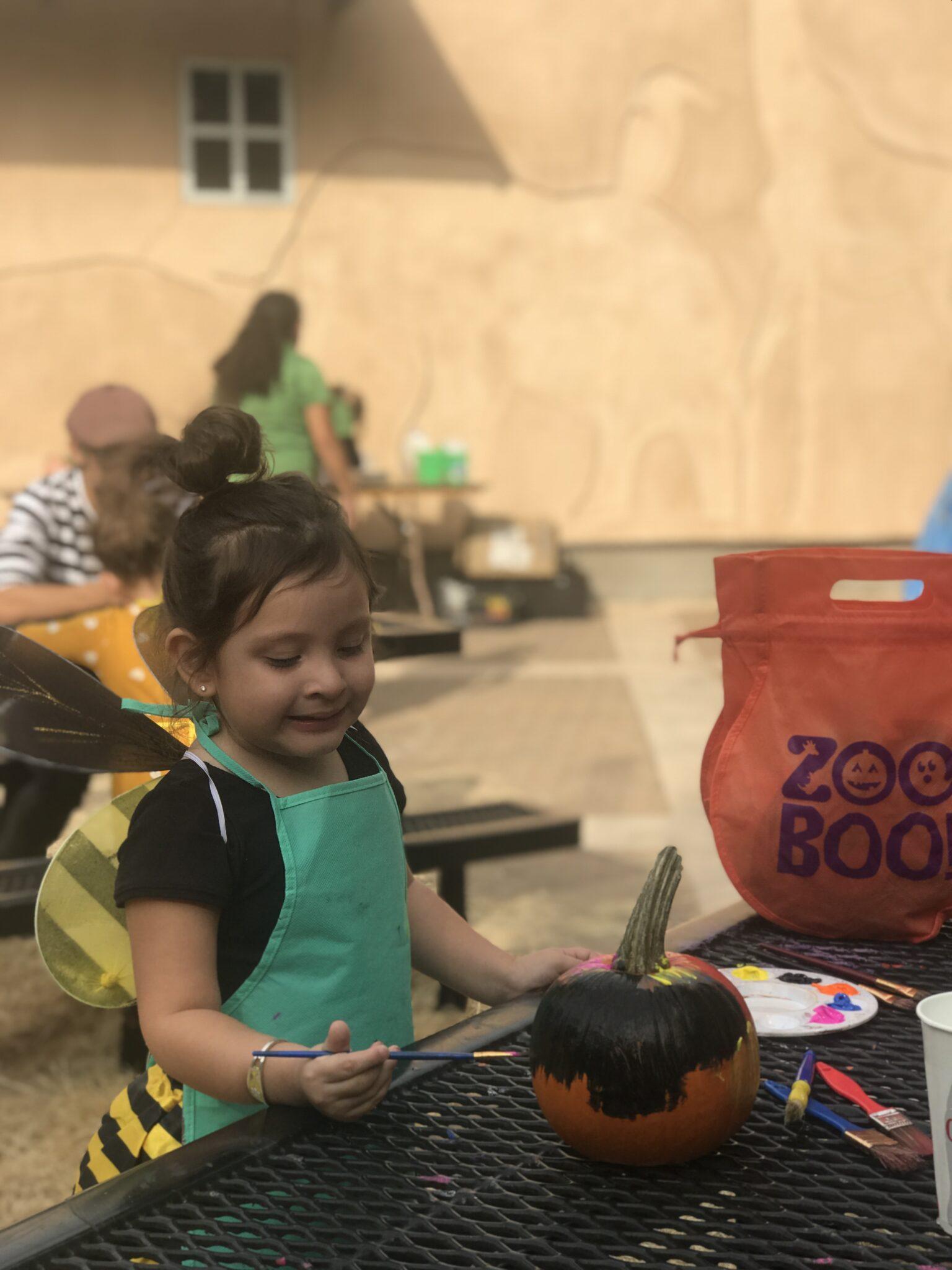 pumpkin painting at san antonio zoo boo