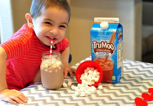 TruMoo Chocolate Marshmallow Milk & Win $500 Target GC #TruMoo