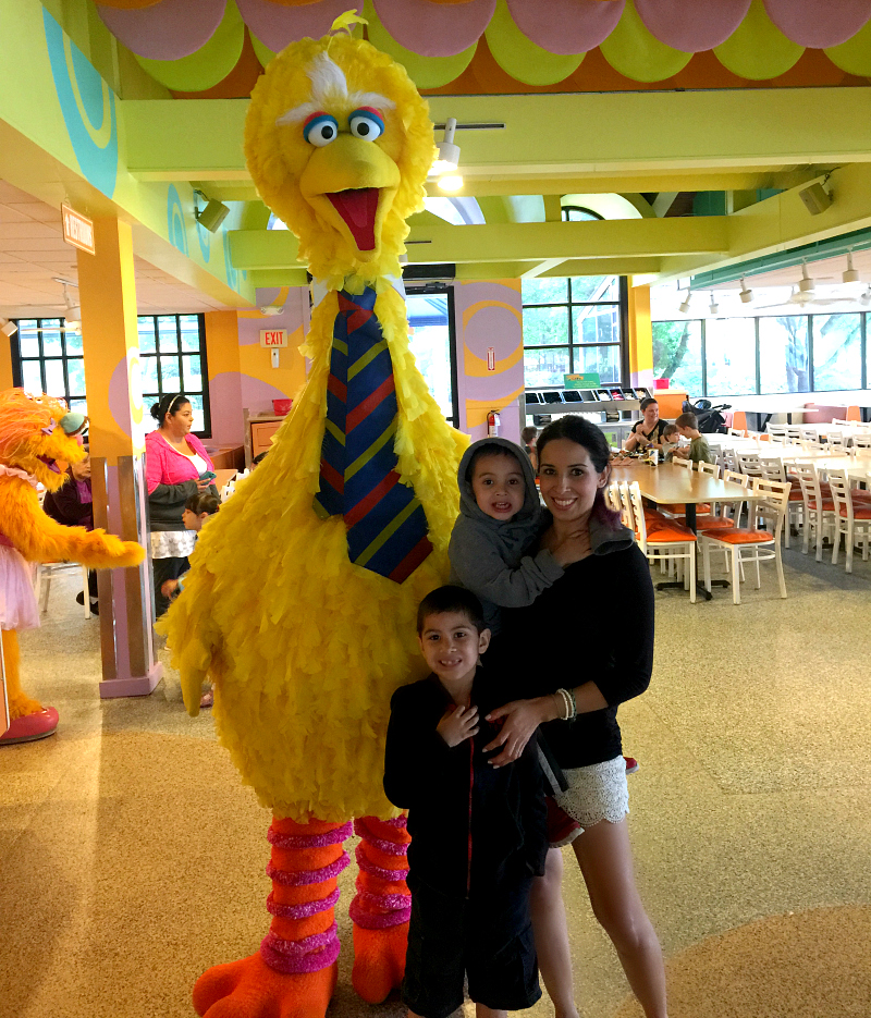 big bird sesame street sea world san antonio just for kids April #Wildside15