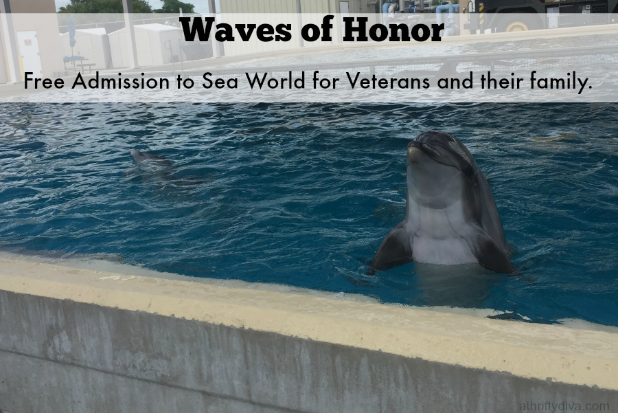 SeaWorld Proudly Offers Free Admission to Veterans