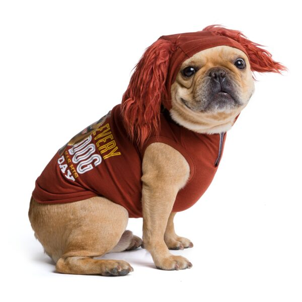 SECRET LIFE OF PETS - DUKE HOODIE