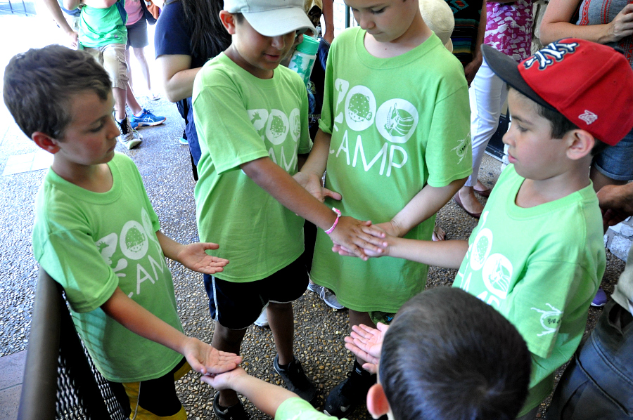 Building friendships at san antonio zoo camp