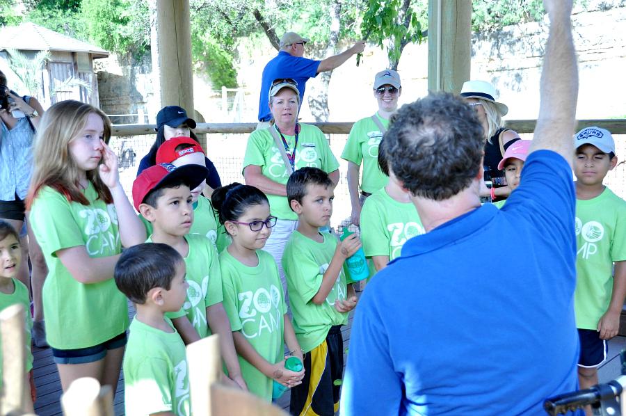 San Antonio Zoo Camp