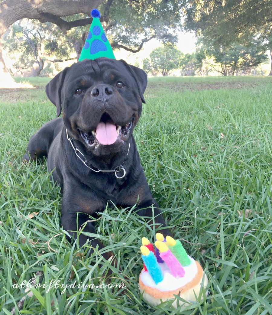 Happy Birthday Beneful Pets