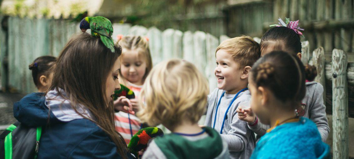 Register For Zoo School | Preschool At The San Antonio Zoo