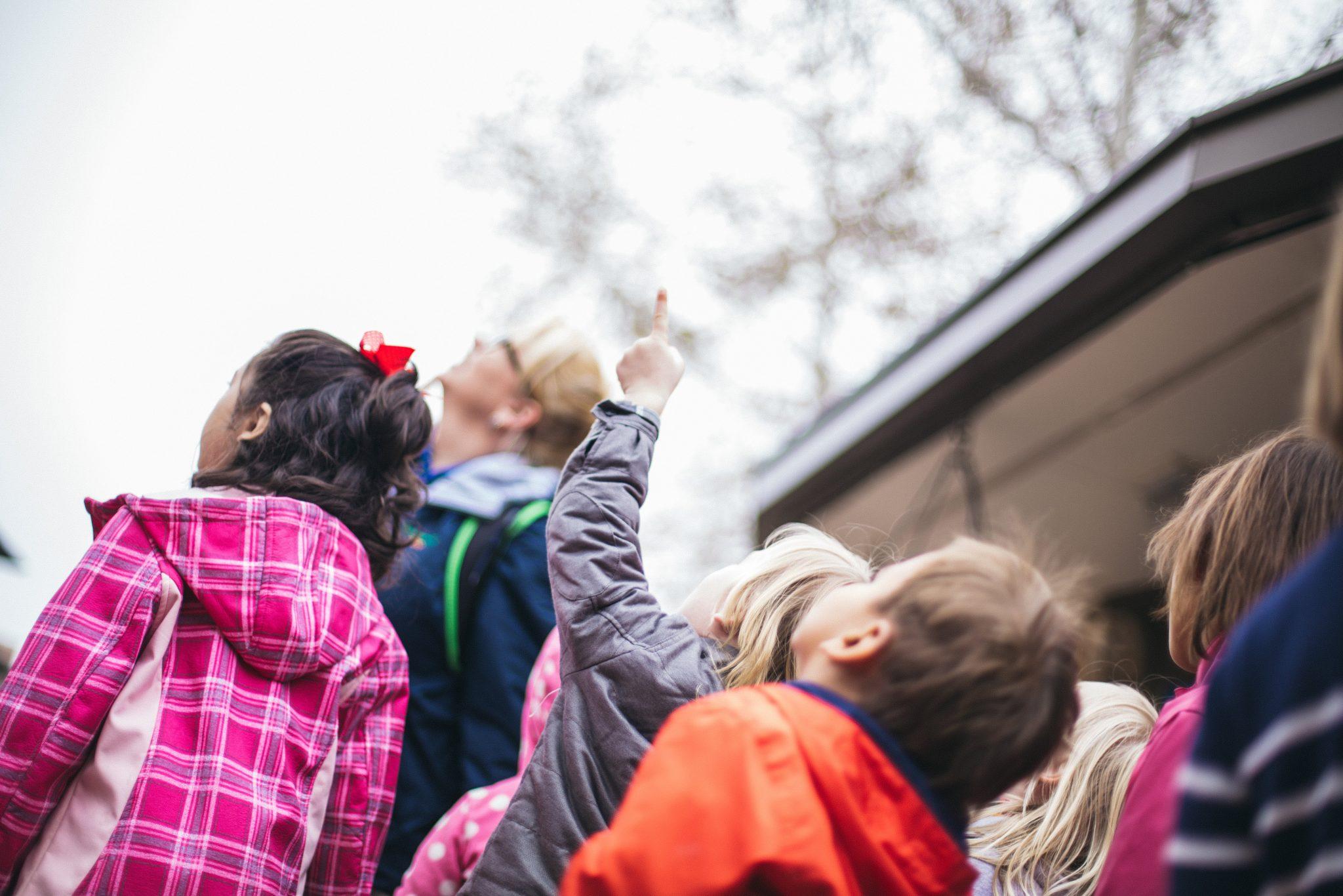 A Day at Zoo School | Preschool At The San Antonio Zoo