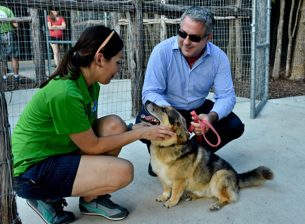 Beneful Dream Dog Park Awards San Antonio Lady Bird Johnson local volunteers
