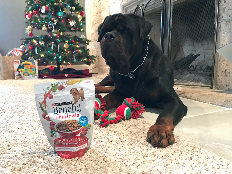 beneful christmas