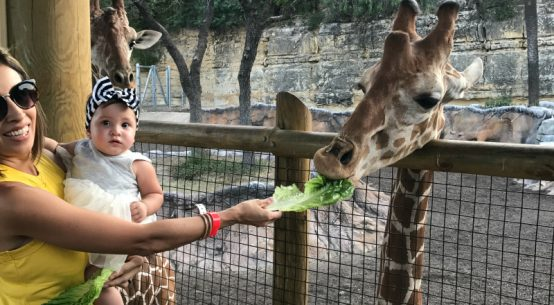beastly breakfast with Brayden San Antonio Zoo