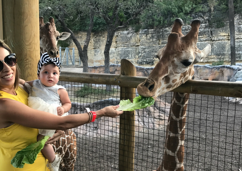 beastly breakfast with Brayden San Antonio Zoo