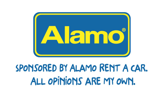 Alamo Blog Disclaimer Tile
