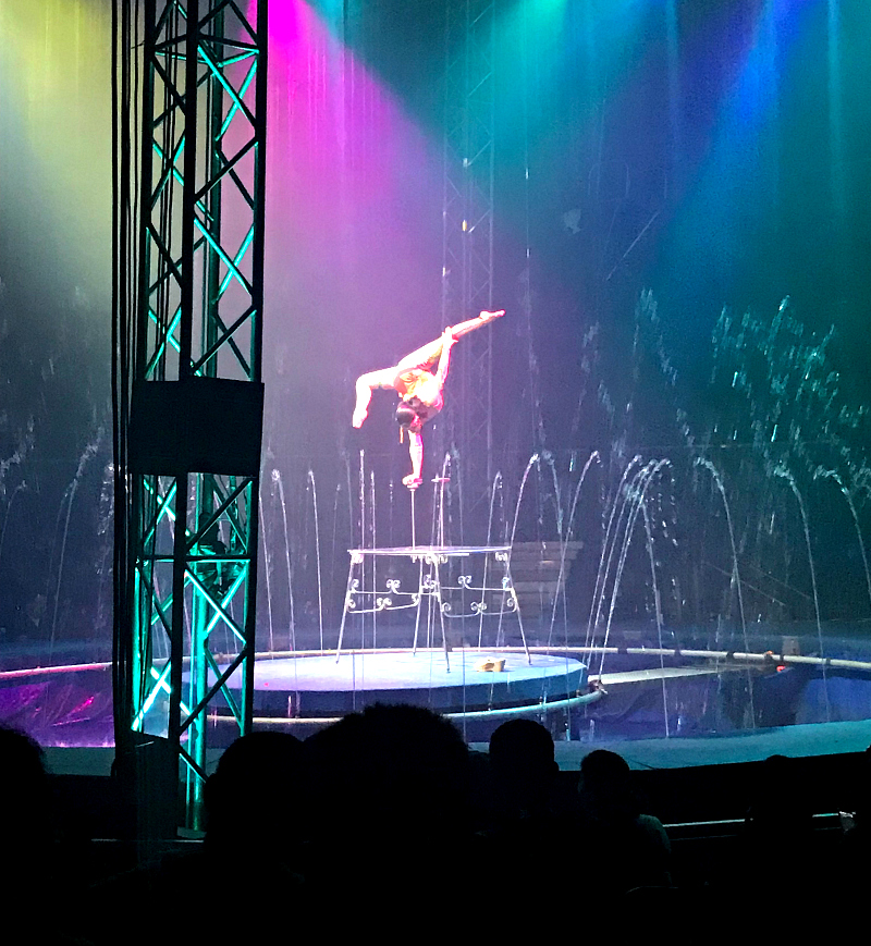 Cirque Italia Review #CirqueItalia